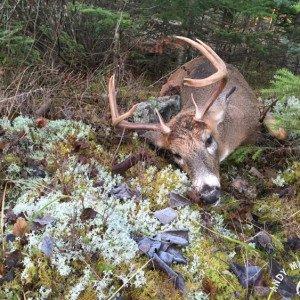 2015-hunting-10.jpg