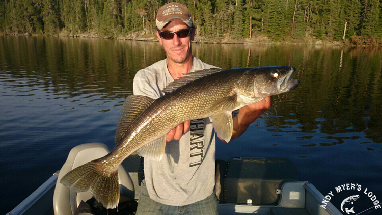 Gear For Your Walleye Fishing Trip